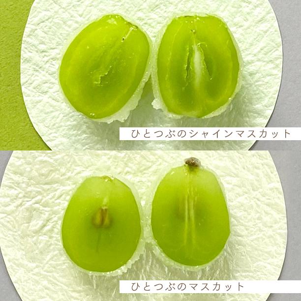 2種類のマスカットの味比べをお楽しみ下さい